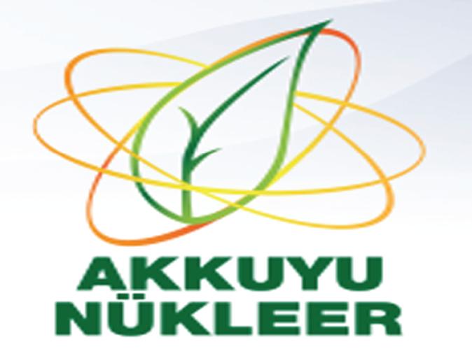 Rosatom head says 2023 deadline for Turkey Nuckear plant 'ambitious'