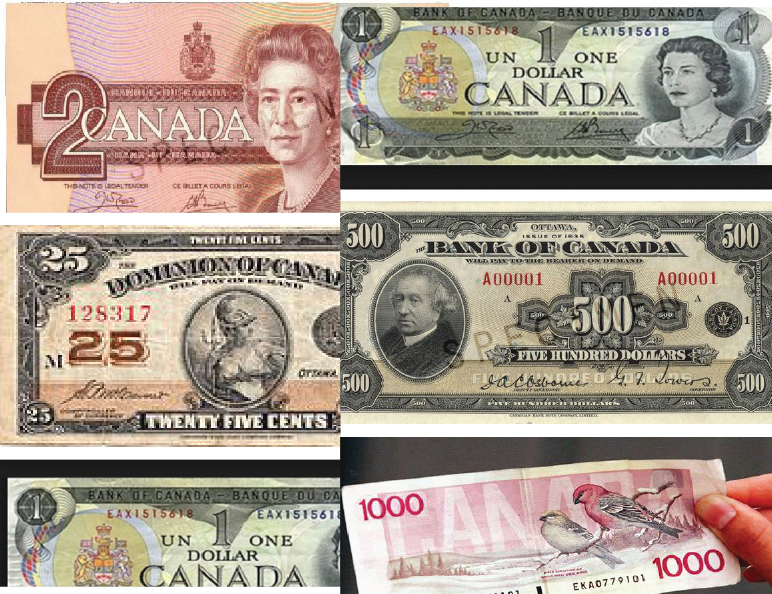 Removing legal tender status from bank notes: What it means for you