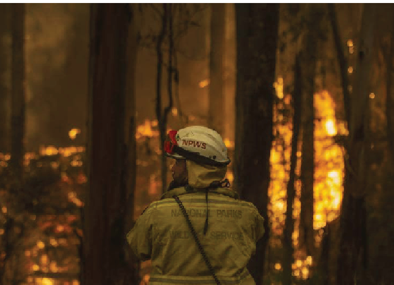 Australia commits billions of dollars to wildfire recovery